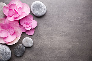 Stones with Flower Petals